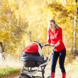 Mother and her daughter with a pram on walk in autumnal alley — Stock Photo