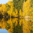 Autumnal pond, Czech Republic — Stock Photo