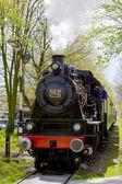Steam train, Boekelo - Haaksbergen, Netherlands — Stock Photo