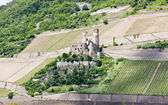 Cesky Sternberk castle — Stock Photo