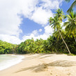 Stock Photo: LSagesse Bay, Grenada