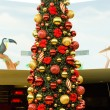 Stock Photo: Detail of Christmas tree, Tobago