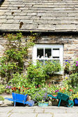 House with plants in Blanchland, Northumberland, England — Stock Photo