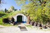 Wine cellars, Petrov - Plze, Czech Republic — Stock Photo
