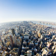View of Manhattan from The Empire State Building, New York City, — Stock Photo #14936401