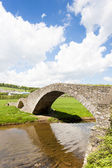 Bridge near Stow, Scottish Borders, Scotland — 图库照片