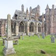 Ruins of Melrose Abbey, Scottish Borders, Scotland — Stock Photo #17840819