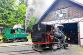 Steam locomotives, Museum of Kysuce village, Vychylovka, Slovaki — Stock Photo