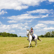Equestrian on horseback — Stock Photo