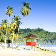 Cabin on the beach, Maracas Bay, Trinidad — Stock Photo #18514635