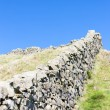 Stock Photo: Hadrian's wall, Northumberland, England
