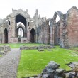 Ruins of Melrose Abbey, Scottish Borders, Scotland — Stock Photo #18516621