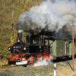 Steam train, Steinbach - Johstadt, Germany — Stock Photo