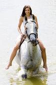 Equestrian on horseback riding through water — Stock Photo