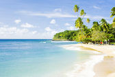 Mount Irvine Bay, Tobago — Stock Photo