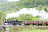 Steam freight train (126.014), Resavica, Serbia — Stock Photo