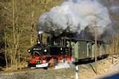 Steam train, Steinbach - Johstadt, Germany — ストック写真