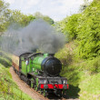Steam train, Bo'Ness   Kinneil Railway, Lothians, Scotland - Stock Photo