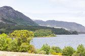 Loch Maree, Highlands, Scotland — Stock Photo