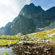 Five Spis Tarns, High Tatras (Vysoke Tatry), Slovakia — Stock Photo #19620141