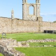 Ruins of St. Rule's church and cathedral, St Andrews, Fife, Scot — Stock Photo #19620713