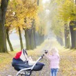 Little girl with a pram on walk in autumnal alley — Stock Photo #19621255