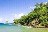 Western coast of Tobago — Stock Photo