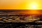 Sunset at coast of Oleron Island, Poitou-Charentes, France — Stock Photo