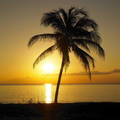 Sunset over Caribbean Sea, Maria la Gorda, Pinar del Rio Provinc — Stock Photo