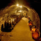 Wine cellar, Vrba Winery, Vrbovec, Czech Republic — Stock Photo