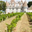 Monbazillac Castle with vineyard, Aquitaine, France - Foto Stock