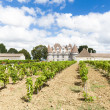 Monbazillac Castle with vineyard, Aquitaine, France — Stock Photo #20781741