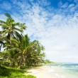 Martin's Bay, Barbados, Caribbean — Stock Photo