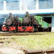 Steam locomotives in depot, Kostolac, Serbia — Stock Photo #20986297