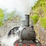 Steam locomotive (126.014), Resavica, Serbia — Stock Photo #20986405