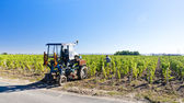 Vineyard with a tractor, Bordeaux Region, France — Stock Photo