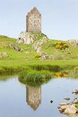 Smailholm wieża w pobliżu kelso, granic szkocji, szkocja — Zdjęcie stockowe