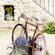 Bicycle, Provence, France — Stock Photo #21013425