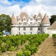 Monbazillac Castle with vineyard, Aquitaine, France — Stock Photo #21017895