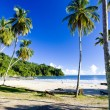 Maracas Bay, Trinidad — Stock Photo #21563793