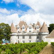 Monbazillac Castle with vineyard, Aquitaine, France — Stock Photo #21568023
