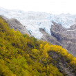 Landscape near Melkevollbreen Glacier, Jostedalsbreen National P — Stock Photo