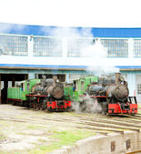 Steam locomotives in depot, Kostolac, Serbia — Stock Photo