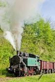 Steam freight train, Durdevik, Bosnia and Hercegovina — Stock Photo