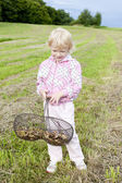 Little girl with basket of mushrooms — Stock Photo