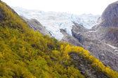 Landscape near Melkevollbreen Glacier, Jostedalsbreen National P — Stock Photo