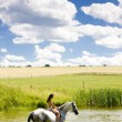 Equestrian on horseback riding through water — Stock Photo