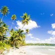 Rockly Bay, Tobago — Stock Photo
