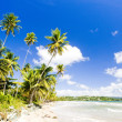 Stock Photo: Rockly Bay, Tobago