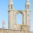 Ruins of St. Rule's church and cathedral, St Andrews, Fife, Scot — Stock Photo #22517939